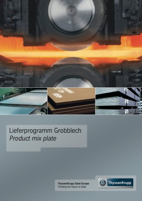 Product range Heavy plate
